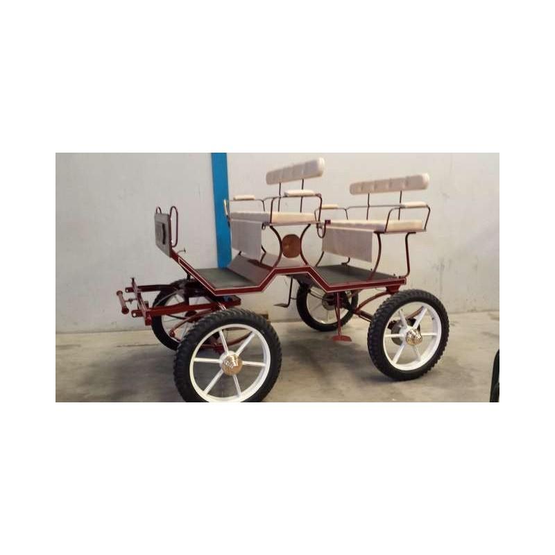 Buggy con ruedas neumaticas 21