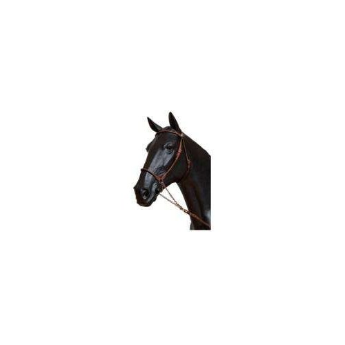 Cabezada presentacion caballo arabe gomez