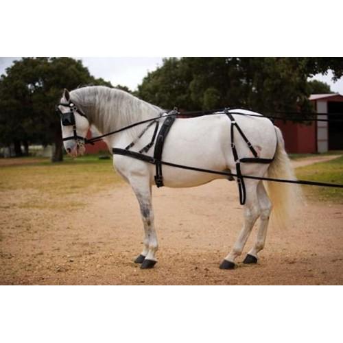 Enganche  nylon caballo y pony