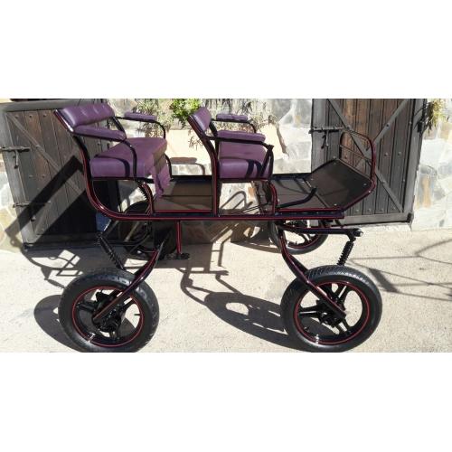 buggy para caballo
